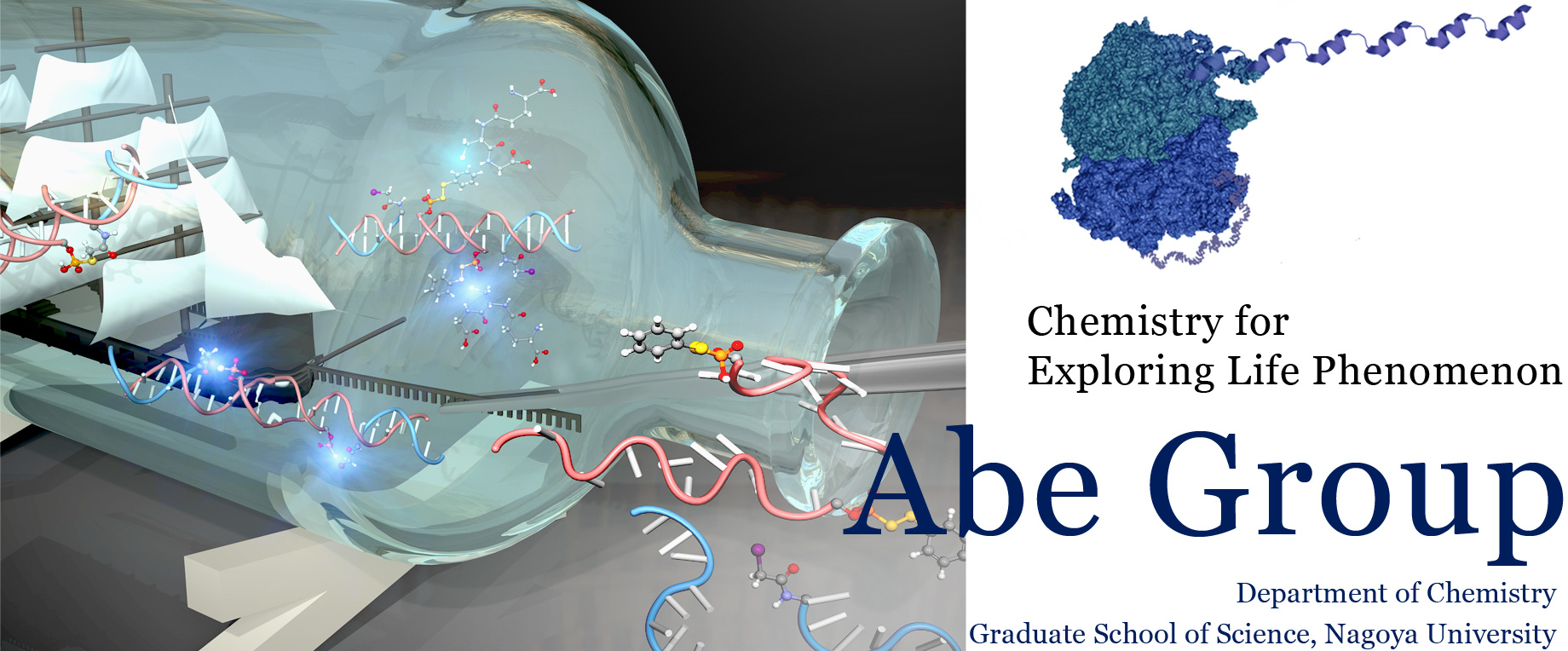 Chemistry for Exploring Life Phenomenon, Abe Group, Department of Chemistry, Graduate School of Science, Nagoya University